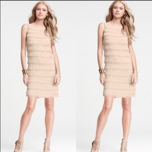 Ann Taylor layered sheath dress